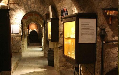 Один из погребов музея вина в Париже
