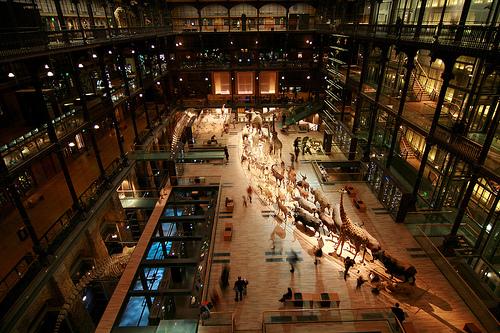 Национальный музей естественной истории - общий план сверху
