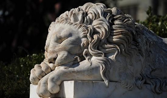 Львы встречают посетителей