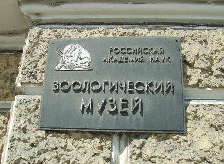 Зоологический музей в Санкт-Петербурге, Россия - фото