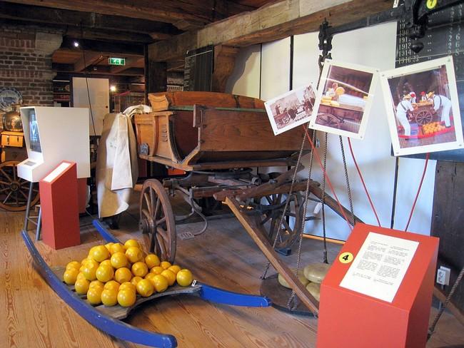 Экспонаты в зале музея сыра