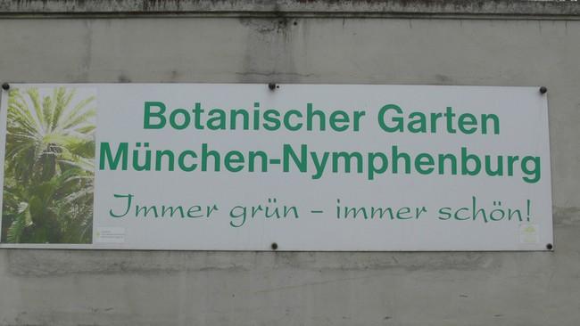 Вывеска- Ботанический сад Мюнхена – Нимфенбург. Всегда зелен – всегда прекрасен!