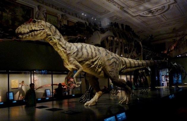 Динозавр в музее естествознания, Вена, Австрия