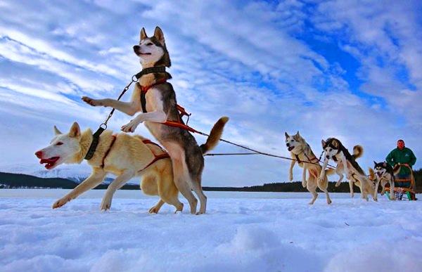 Отдых в Финляндии в декабре